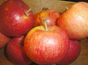 Apple cider makes flavorful baking ingredient.