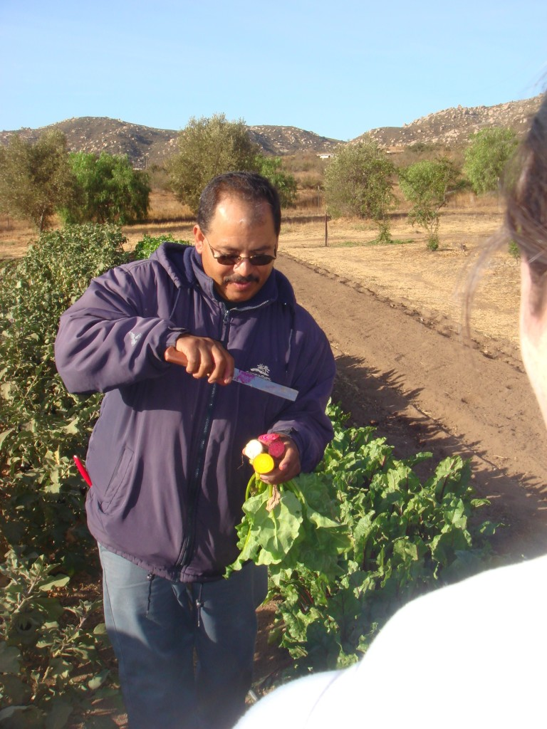 Organic Garden at The Ranch, with Salvadore